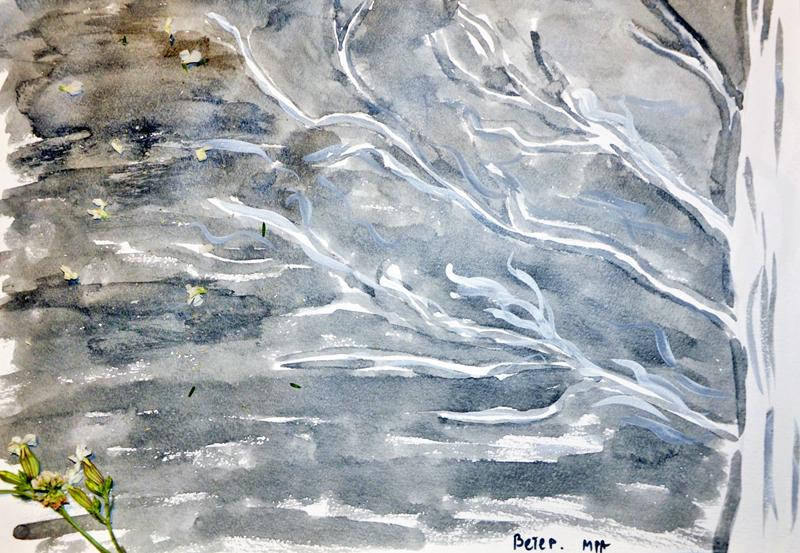 стихи, белый ветер, белый стих